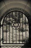 Kazimierz Jewish cemetery.